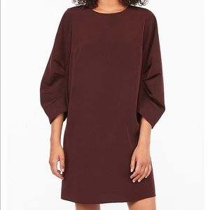 NEW Express Ruched Sleeve Shift Dress